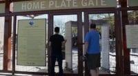 Fans, Camelback Ranch entrance