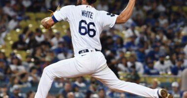 Mitch White